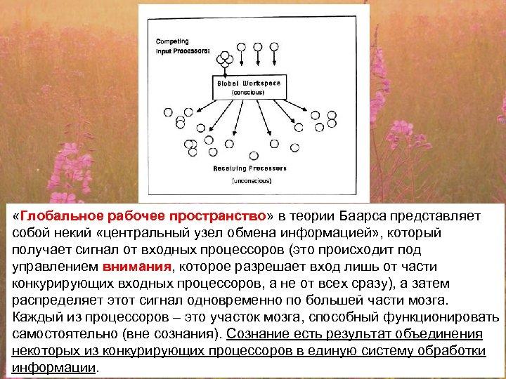 «Глобальное рабочее пространство» в теории Баарса представляет собой некий «центральный узел обмена информацией»