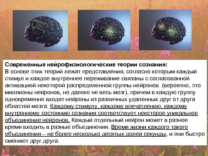 Современные нейрофизиологические теории сознания: В основе этих теорий лежат представления, согласно которым каждый стимул