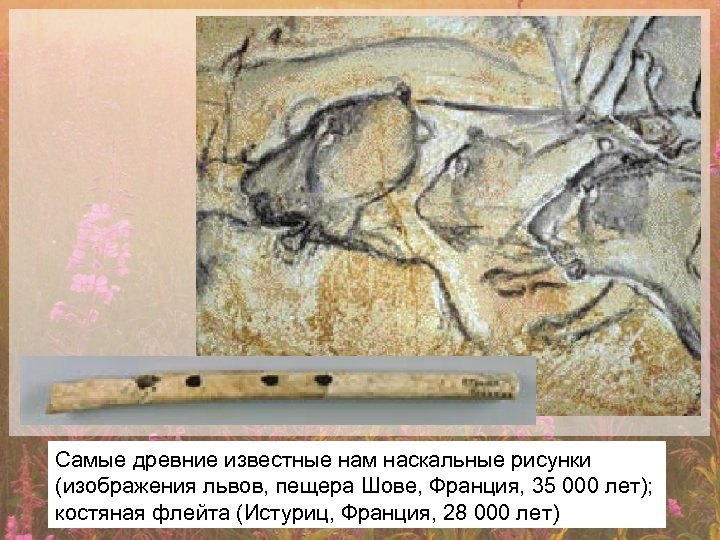 Самые древние известные нам наскальные рисунки (изображения львов, пещера Шове, Франция, 35 000 лет);