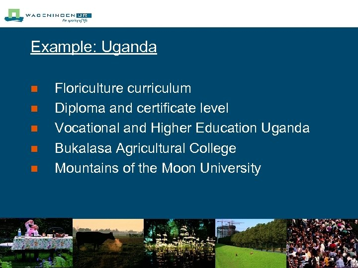 Example: Uganda n n n Floriculture curriculum Diploma and certificate level Vocational and Higher