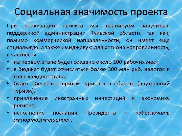 Социальная значимость проекта При реализации проекта мы планируем заручиться поддержкой администрации Тульской области, так