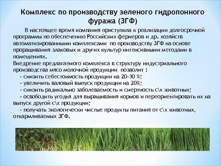 Комплекс по производству зеленого гидропонного фуража (ЗГФ) В настоящее время компания приступила к реализации