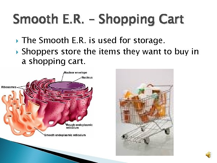 Smooth E. R. – Shopping Cart The Smooth E. R. is used for storage.