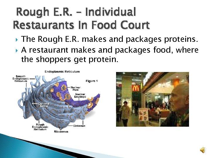 Rough E. R. – Individual Restaurants In Food Court The Rough E. R. makes
