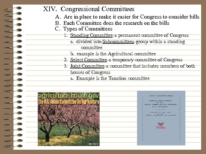 XIV. Congressional Committees A. Are in place to make it easier for Congress to
