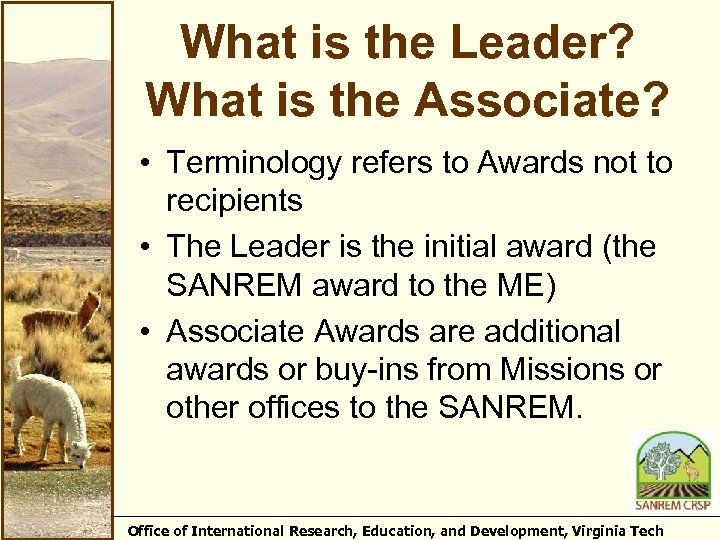 What is the Leader? What is the Associate? • Terminology refers to Awards not