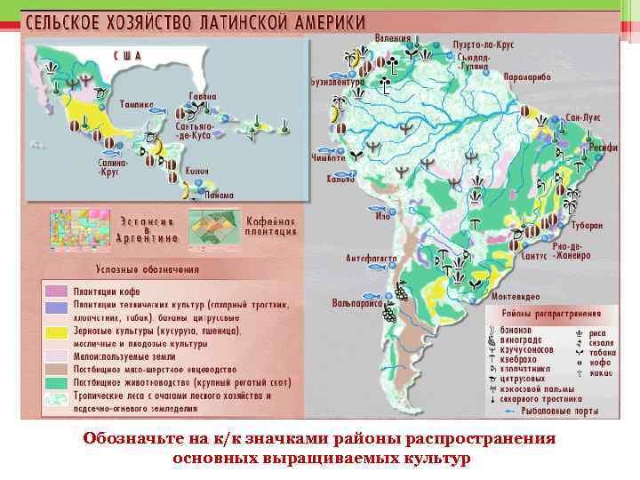 Обозначьте на к/к значками районы распространения основных выращиваемых культур
