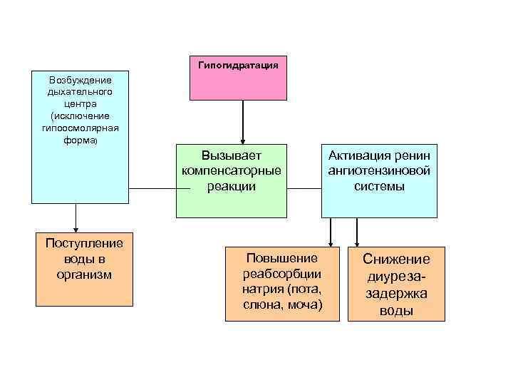 Гипогидратация Возбуждение дыхательного центра (исключение гипоосмолярная форма) Вызывает компенсаторные реакции Поступление воды в организм