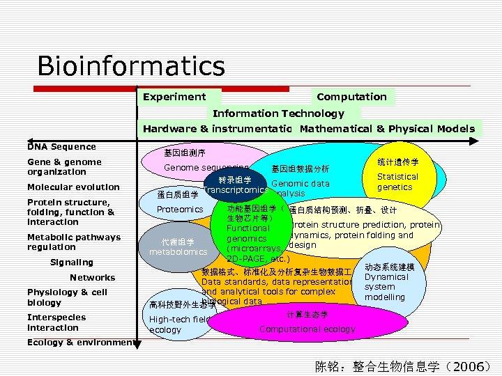 Bioinformatics Experiment Computation Information Technology Hardware & instrumentation. Mathematical & Physical Models DNA Sequence