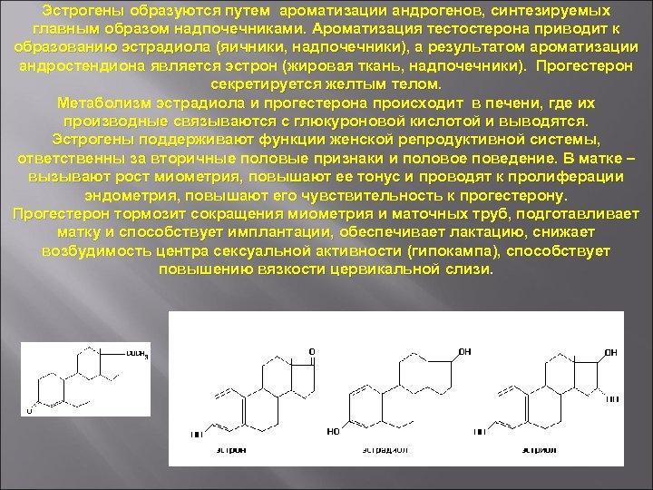 Эстрогены образуются путем ароматизации андрогенов, синтезируемых главным образом надпочечниками. Ароматизация тестостерона приводит к образованию