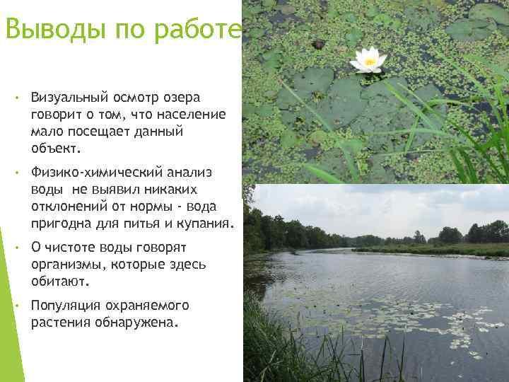 Выводы по работе • Визуальный осмотр озера говорит о том, что население мало посещает