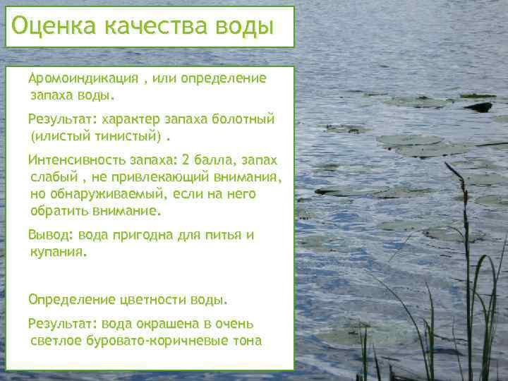 Оценка качества воды 1. Аромоиндикация , или определение запаха воды. Результат: характер запаха болотный