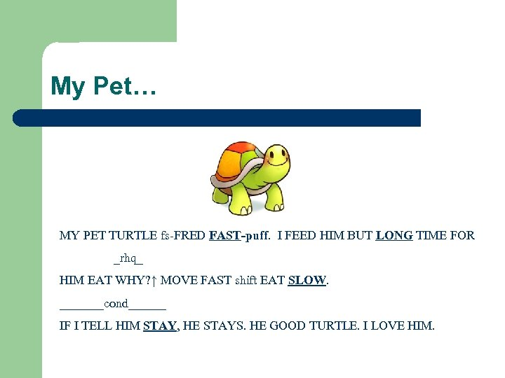 My Pet… MY PET TURTLE fs-FRED FAST-puff. I FEED HIM BUT LONG TIME FOR