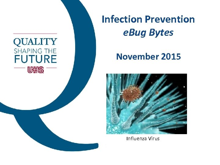 Infection Prevention e. Bug Bytes November 2015 Influenza Virus