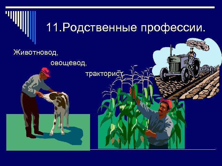 11. Родственные профессии. Животновод, овощевод, тракторист.