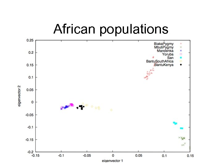 African populations