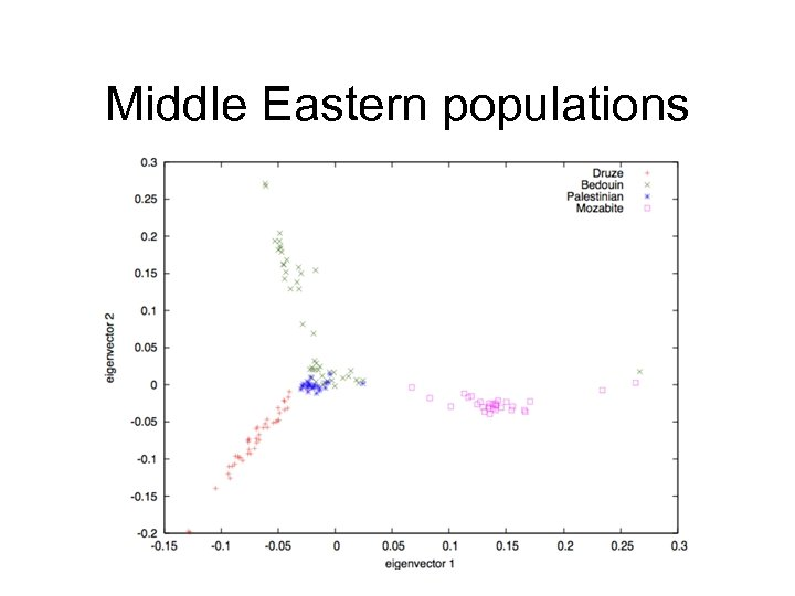 Middle Eastern populations