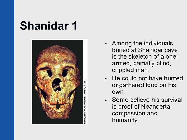 Shanidar 1 • • • Among the individuals buried at Shanidar cave is the