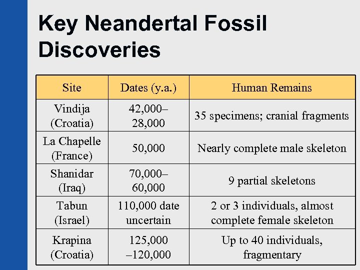 Key Neandertal Fossil Discoveries Site Dates (y. a. ) Human Remains Vindija (Croatia) 42,