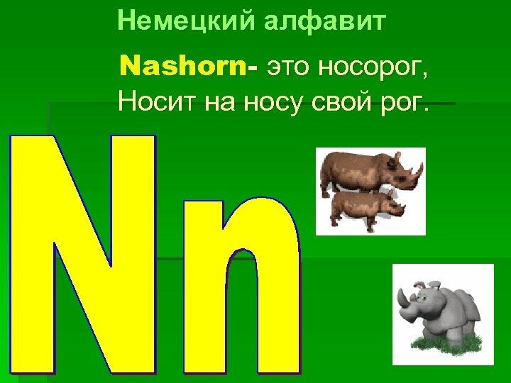 Немецкий алфавит Nashorn- это носорог, Носит на носу свой рог.