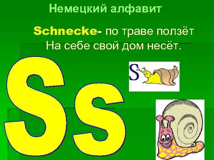 Немецкий алфавит Schnecke- по траве ползёт На себе свой дом несёт.