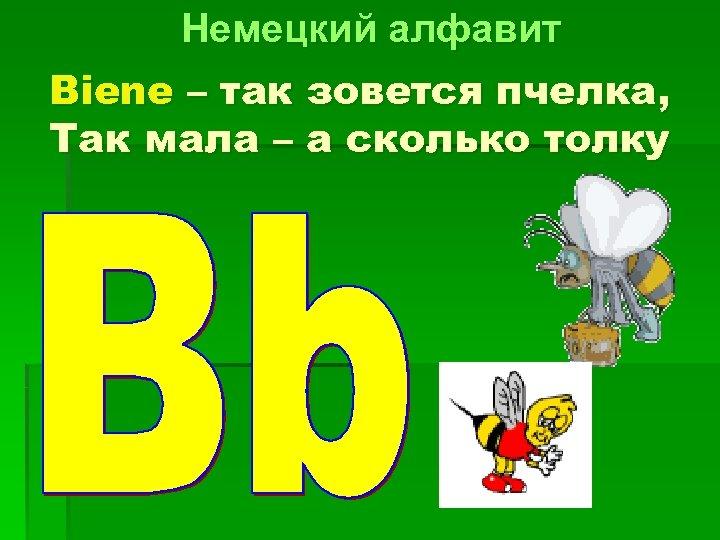 Немецкий алфавит Biene – так зовется пчелка, Так мала – а сколько толку