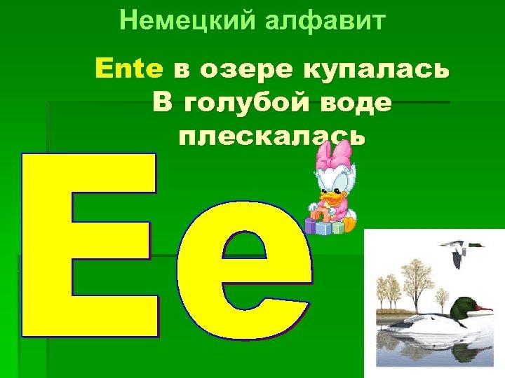 Немецкий алфавит Ente в озере купалась В голубой воде плескалась