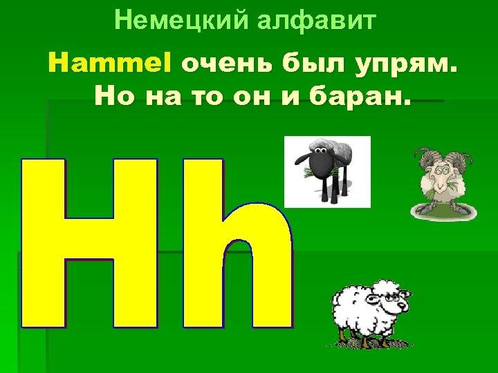 Немецкий алфавит Hammel очень был упрям. Но на то он и баран.