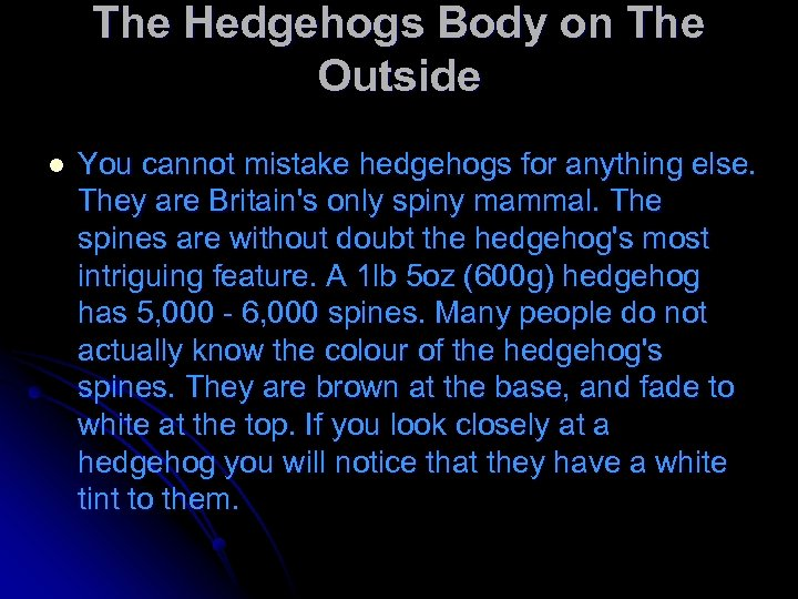 The Hedgehogs Body on The Outside l You cannot mistake hedgehogs for anything else.