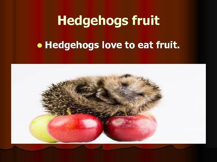 Hedgehogs fruit l Hedgehogs love to eat fruit.