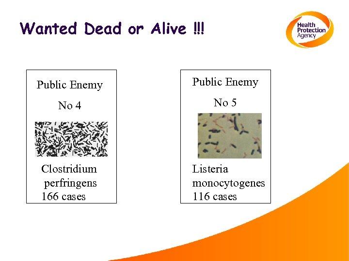 Wanted Dead or Alive !!! Public Enemy No 4 No 5 Clostridium perfringens 166