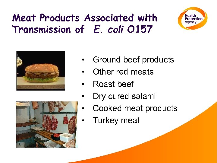 Meat Products Associated with Transmission of E. coli O 157 • • • Ground