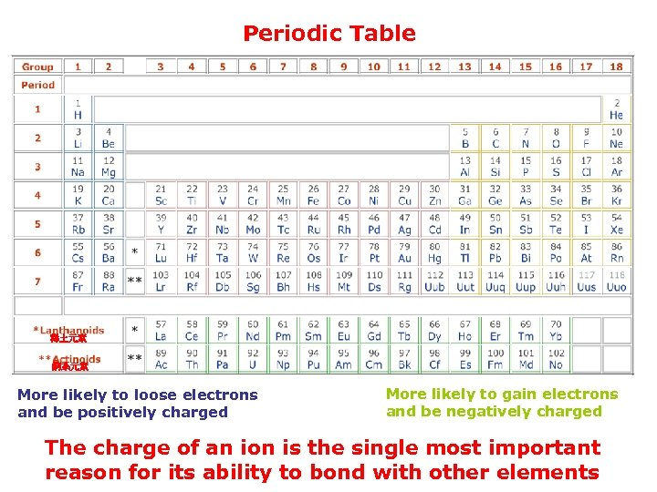 Periodic Table 稀土元素 錒系元素 More likely to loose electrons and be positively charged More