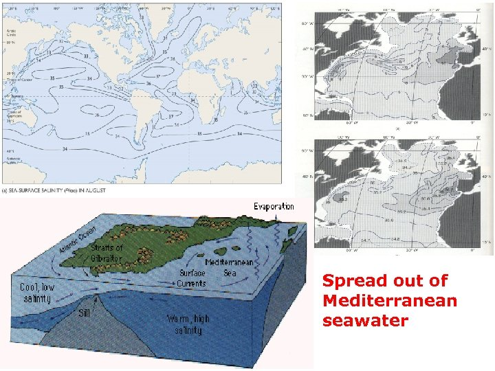 Spread out of Mediterranean seawater
