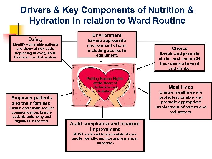 Drivers & Key Components of Nutrition & Hydration in relation to Ward Routine Safety