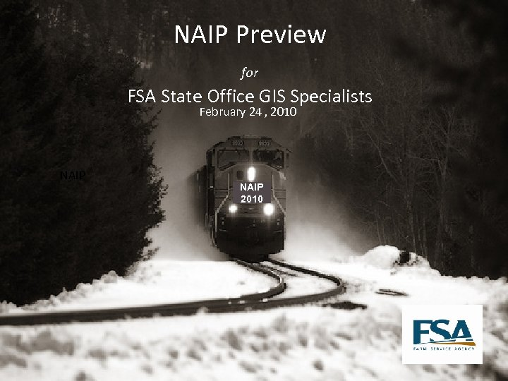 NAIP Preview for FSA State Office GIS Specialists February 24 , 2010 NAIP 2010