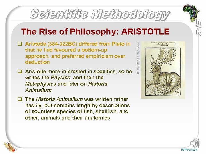 The Rise of Philosophy: ARISTOTLE q Aristotle more interested in specifics, so he writes