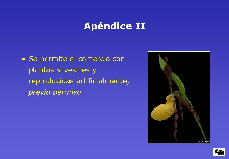 Apéndice II • Se permite el comercio con plantas silvestres y reproducidas artificialmente, previo