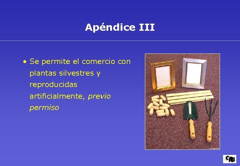 Apéndice III • Se permite el comercio con plantas silvestres y reproducidas artificialmente, previo