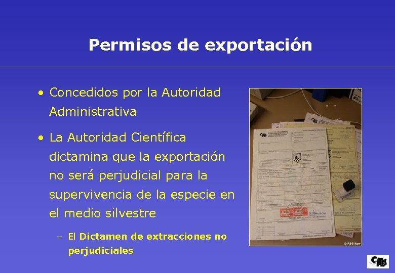 Permisos de exportación • Concedidos por la Autoridad Administrativa • La Autoridad Científica dictamina