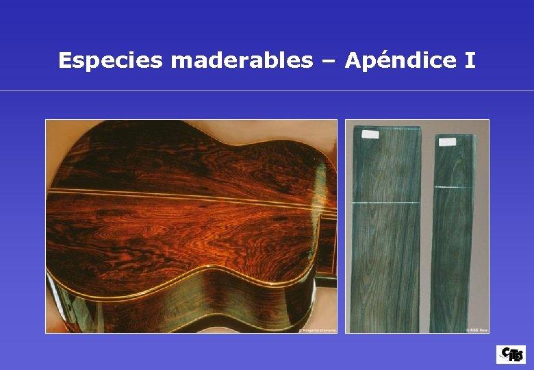 Especies maderables – Apéndice I