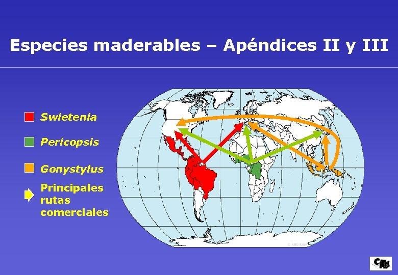 Especies maderables – Apéndices II y III Swietenia Pericopsis Gonystylus Principales rutas comerciales