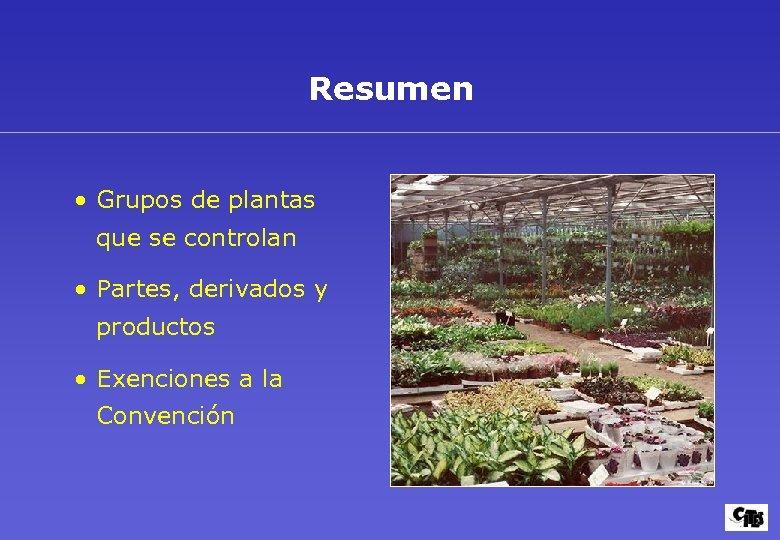 Resumen • Grupos de plantas que se controlan • Partes, derivados y productos •