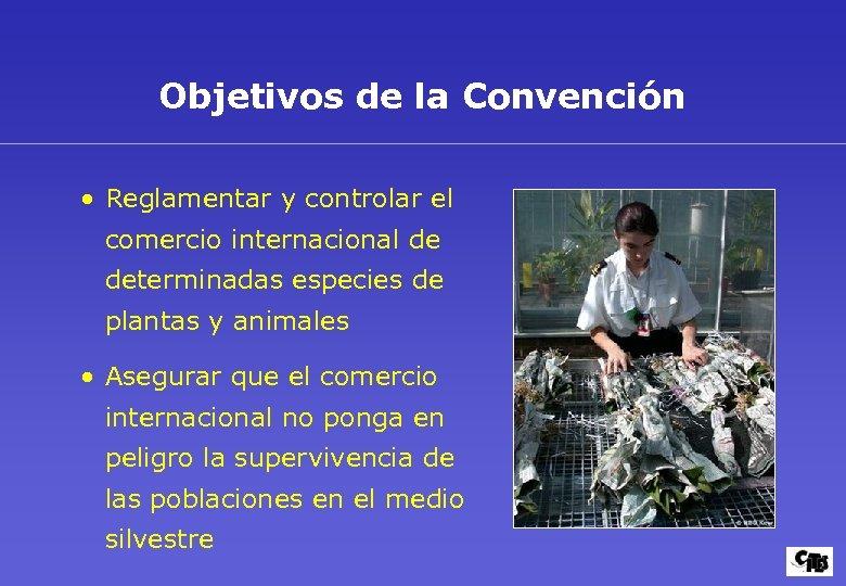 Objetivos de la Convención • Reglamentar y controlar el comercio internacional de determinadas especies