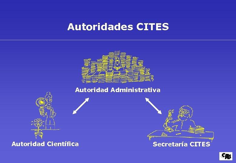 Autoridades CITES Autoridad Administrativa Autoridad Científica Secretaría CITES