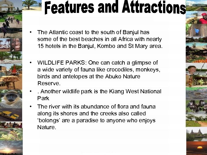 • The Atlantic coast to the south of Banjul has some of the