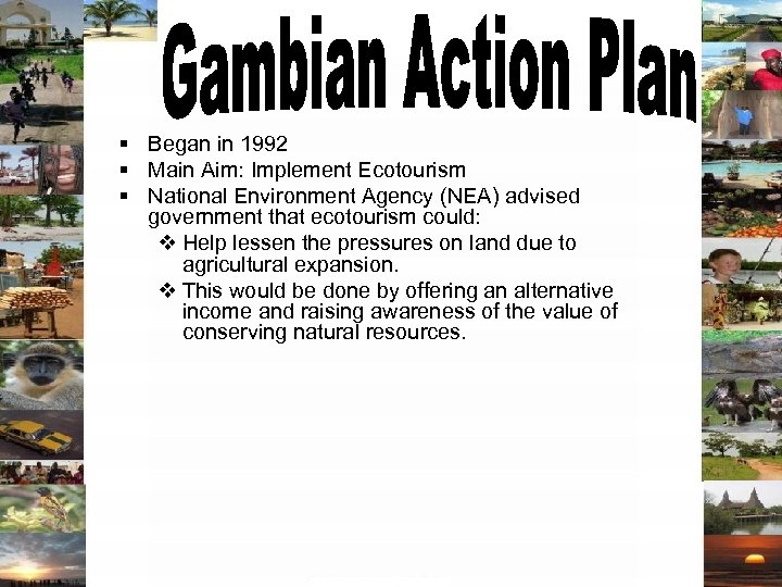 § Began in 1992 § Main Aim: Implement Ecotourism § National Environment Agency (NEA)