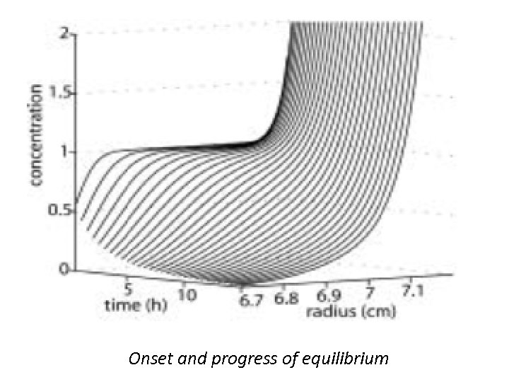 Onset and progress of equilibrium