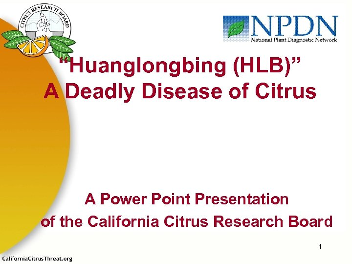 """""""Huanglongbing (HLB)"""" A Deadly Disease of Citrus A Power Point Presentation of the California"""