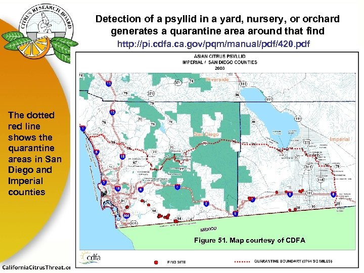 Detection of a psyllid in a yard, nursery, or orchard generates a quarantine area